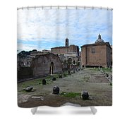 Basilica Aemilia From Behind Shower Curtain