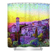 Basilica Of St. Francis Of Assisi Shower Curtain