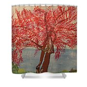 Bask In Blooming Beauty Shower Curtain