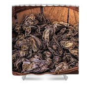 Basket Full Of Oysters Shower Curtain