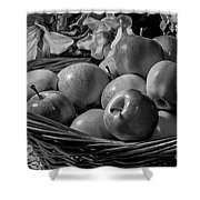 Basket Of Apples Bw Shower Curtain