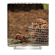 Basket Of Cones Shower Curtain