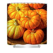 Basket Of Pumpkins Shower Curtain