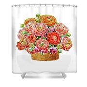 Basket With Ranunculus Flowers Watercolor Shower Curtain