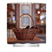 Basket With Wine Bottles Shower Curtain