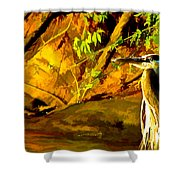 Basking Sunset Shower Curtain