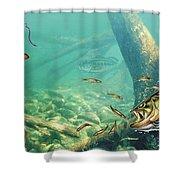 Bass Pond Shower Curtain