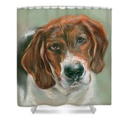 Basset Hound Mix Pup Shower Curtain by MM Anderson