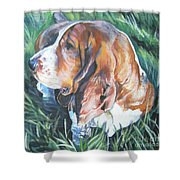 Bassett Hound 1 Shower Curtain