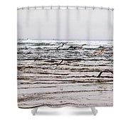 Bastendorff Beach Shower Curtain