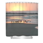 Basting In The Sunrise  Shower Curtain