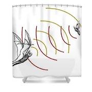 Bat Bio Sonar Shower Curtain