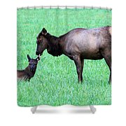 Elk's Bath Time Shower Curtain