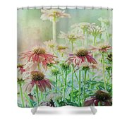 Bathed In Light Shower Curtain