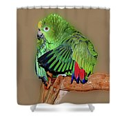 Bathing Beauty Amazon Shower Curtain