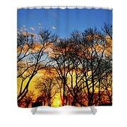 Battery Park Sunset Shower Curtain