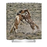 Battle For Dominance Shower Curtain