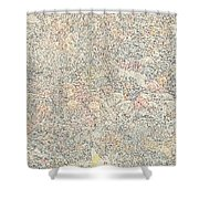 Battle Of Issus Shower Curtain