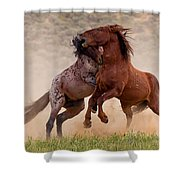 Battleground Shower Curtain