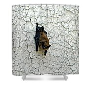 Batty Grin Shower Curtain
