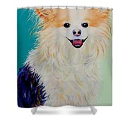 Baxter Shower Curtain