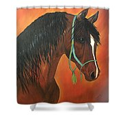 Bay Arabian Shower Curtain