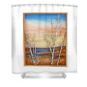 Bay Birch Shower Curtain