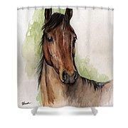 Bay Horse Portrait Watercolor Painting 02 2013 Shower Curtain