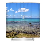 Bayahibe Coral Reef Shower Curtain