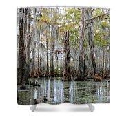 Bayou Magic Shower Curtain