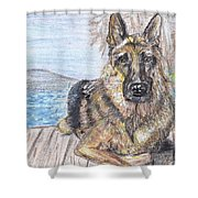 Bayside View Shower Curtain