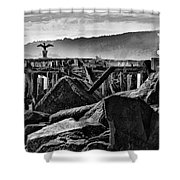 Bayside Wings Shower Curtain