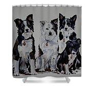 Bc Family Portrait  Shower Curtain
