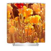 Be Different Be Good Shower Curtain