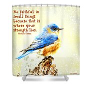 Be Faithful In Small Things Shower Curtain