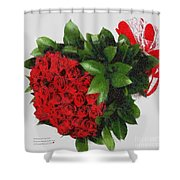 Be Mine Valentine By Presidential Candidate Catherine Lott Shower Curtain