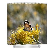 Bea-u-ti-ful Butterfly Shower Curtain