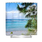 Beach Among The Trees Shower Curtain