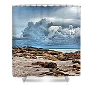 Beach At Washington Oaks Shower Curtain