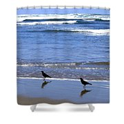 Beach Buddies Shower Curtain