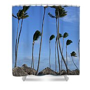 Beach Cabanas And Palm Trees Shower Curtain