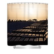 Beach Chairs Shower Curtain