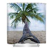 Beach Coco Shower Curtain