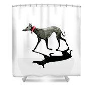 Beach Dog Shower Curtain