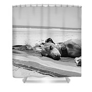 Beach Dreams Are Made Of These In Black And White Shower Curtain