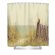 Beach Fence In Grassy Dune South Carolina Shower Curtain