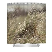 Beach Gras Shower Curtain