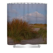 Beach Grass I I Shower Curtain