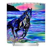 Beach Horse Shower Curtain