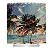 Beach Palms - Multi 9a Shower Curtain